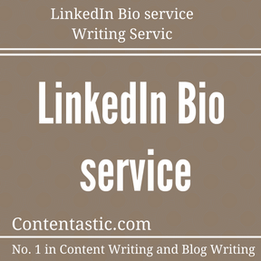 LinkedIn Bio service Writing Service
