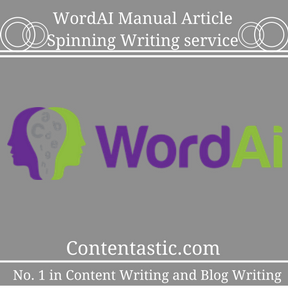WordAI Manual Article Spinning Writing service